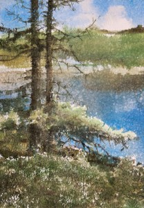 """Pine trees"" watercolor on paper, 41 x 28, 2012"
