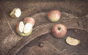 """4 & 1/4 of an apple"" watercolor on paper, 35 x 56, 2012"