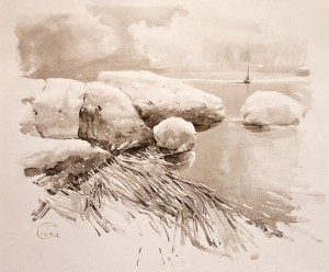 """Reeds and stones"" ink, 50 x 61, 2012"