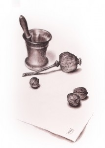 """Poppyhead & nuts"" 40 x 30, sepia drawing, 1991"