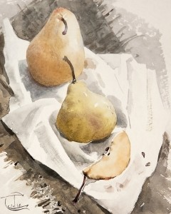 """Pear etude"" watercolor on paper, 25 x 20, 2012"