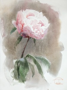 """Peony"" watercolor on paper, 40 x 30, 2013"