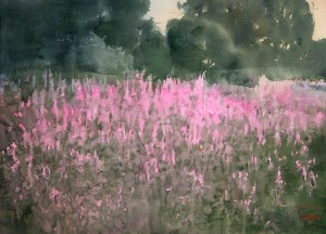 """Fireweed"" watercolor on paper, 41 x 56, 2013"