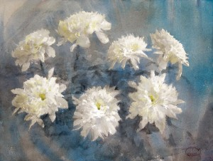 """White chrysanthemums"" watercolor on paper, 46 x 61, 2013"