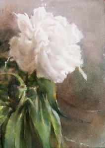 """White peony"" watercolor on paper, 29 x 21, 2014"