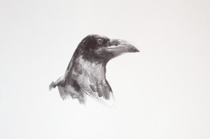 """Ravens & Crows"" sketch #4, watercolor, 15 x 30, 2014"