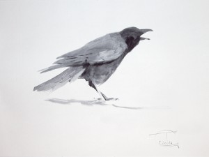 """Ravens & Crows"" sketch #7, watercolor, 30 x 40, 2014"