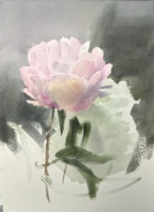 """Pink peony"" watercolor on paper, 24x17, 2020"